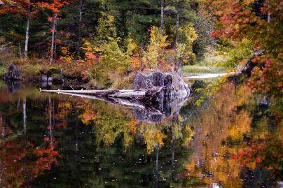 Vermont 2 (6 of 12)
